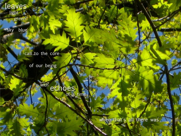 Words on Images - Leaves